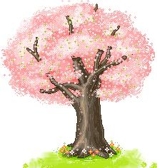 Saison printemps page 2 - Arbre fleurs rouges printemps ...