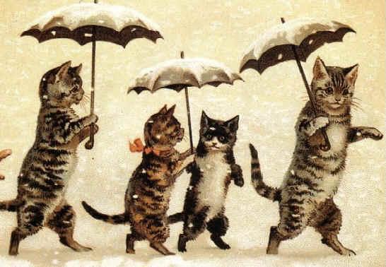 Famille Chat sous la Neige